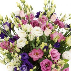 Boeket eustoma roze paars wit 20160408168