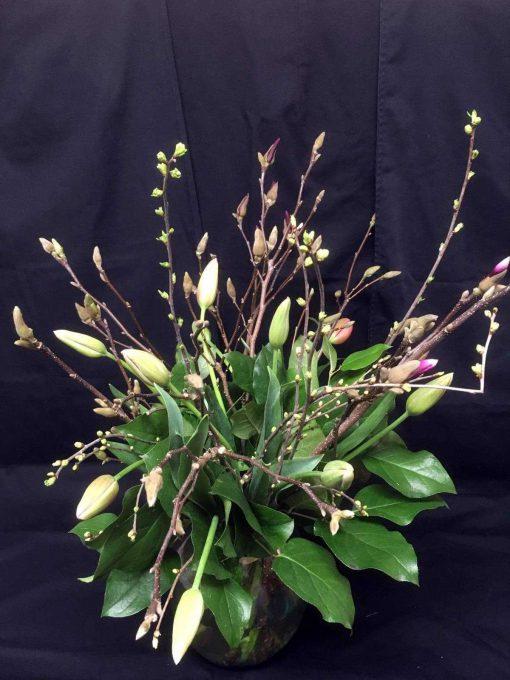 Franse tulpen en magnoliatakken